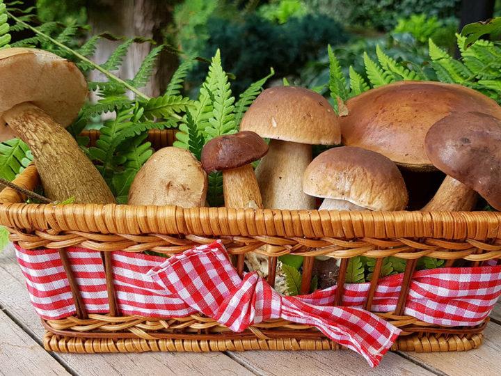 ciuperci-a-la-grec