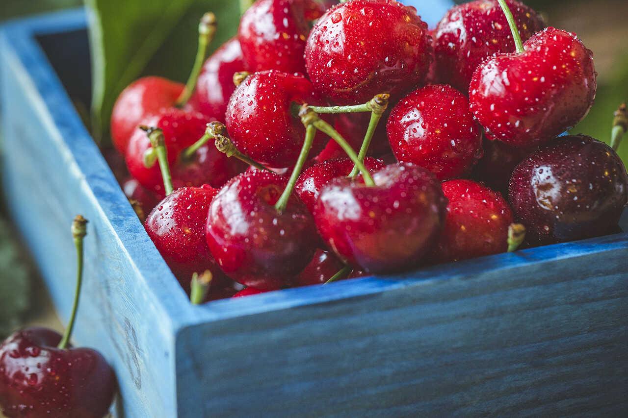 8 beneficii de la cireşe